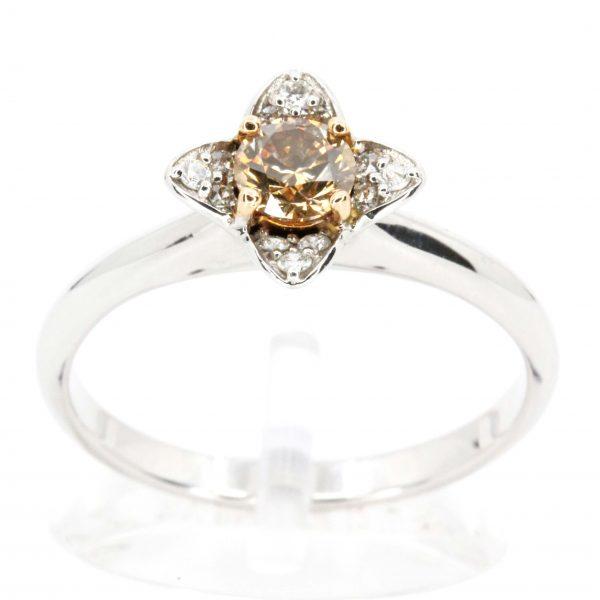 Diamond Halo Chocolate Ring White Gold