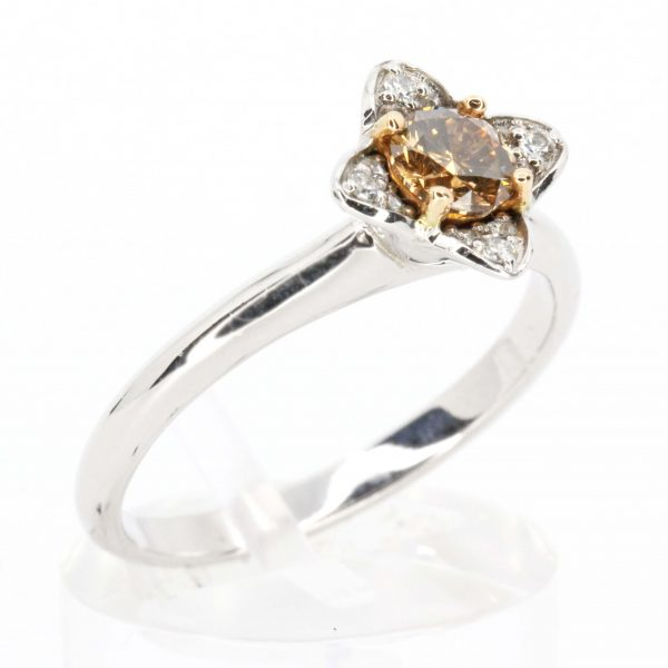 Diamond Halo Chocolate Ring White Gold